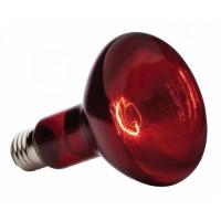 Лампа ИКЗК E27 215-225-250 (уп. 15шт.) (Калашниково)